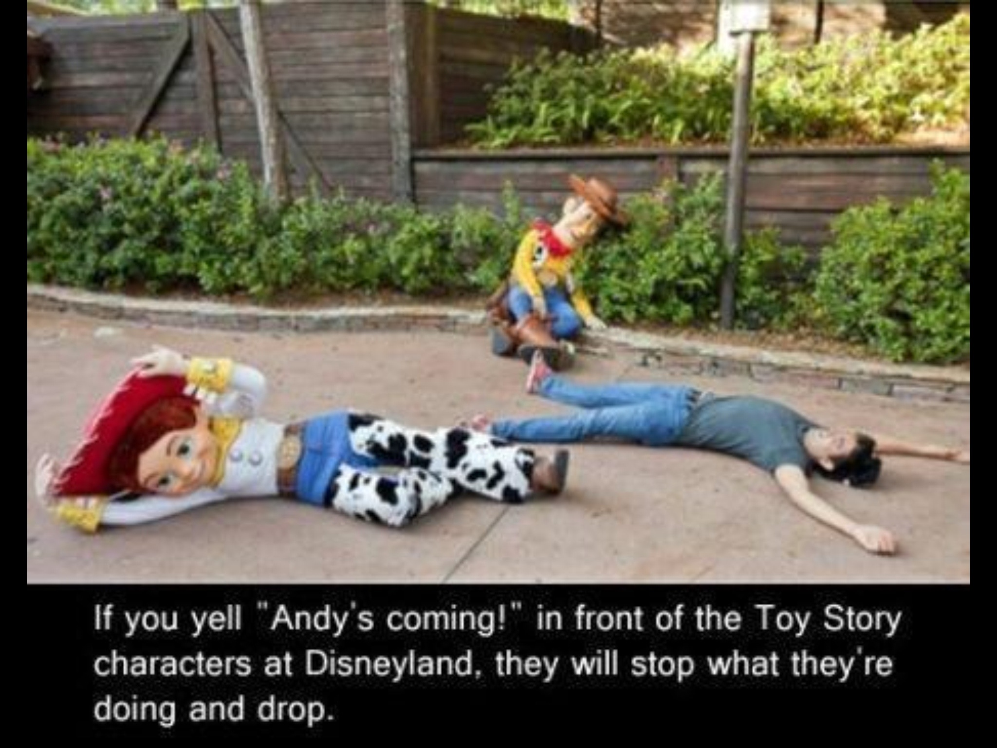 Must do this next time in Disney